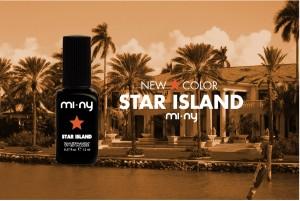 MI-NY_star-island